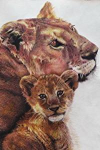 Fotos Große Katze Löwe Gezeichnet Jungtiere 2
