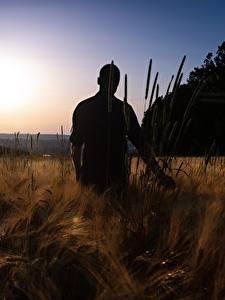 Fotos Sonnenaufgänge und Sonnenuntergänge Felder Mann Silhouette Natur
