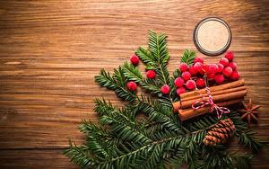 Bilder Neujahr Beere Eberesche Ast Bretter Zapfen