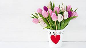 Wallpapers Tulips Valentine's Day Heart Flowers