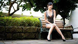 Wallpapers Asian Legs Beautiful Blurred background Bench Brunette girl Sitting Décolletage  Girls