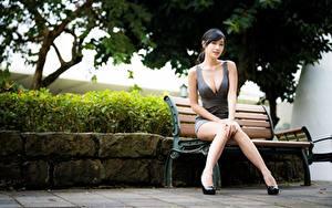 Desktop hintergrundbilder Asiatische Bein Schön Unscharfer Hintergrund Bank (Möbel) Brünette Sitzend Dekolleté  Mädchens