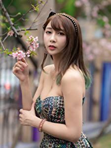 Fotos Asiatische Ast Kleid Hand Braune Haare Blick junge frau