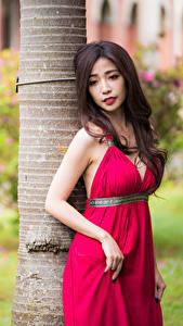 Hintergrundbilder Asiaten Braune Haare Posiert Kleid Hand junge frau