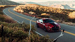 Fotos Ford Wege Rot Metallisch 2019 Mustang Shelby GT500 Autos