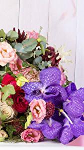 Bilder Sträuße Orchideen Eustoma Ranunkel Bretter Blumen