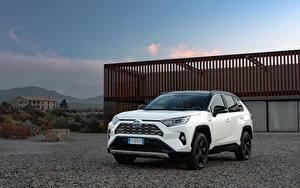 Bilder Toyota Hybrid Autos SUV Weiß Metallisch 2019 RAV4 Hybrid Style Worldwide