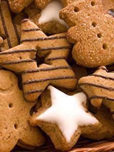 Bilder Kekse Großansicht Design Kleine Sterne Fichten Lebensmittel