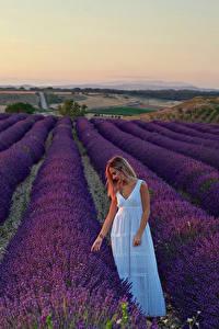 Fotos Felder Lavendel Blondine Kleid Natur Mädchens
