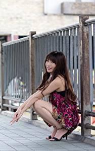 Fotos Asiatisches Zaun Braune Haare Sitzend Lächeln Unscharfer Hintergrund junge frau