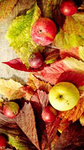 Fotos Herbst Äpfel Bretter Blatt