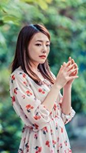 Desktop hintergrundbilder Asiaten Bokeh Posiert Kleid Hand Braunhaarige Mädchens