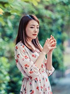 Bilder Asiaten Bokeh Posiert Kleid Hand Braunhaarige