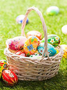 Hintergrundbilder Feiertage Ostern Ei Weidenkorb Gras Design