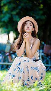 Fotos Asiatisches Unscharfer Hintergrund Kleid Der Hut Braunhaarige Hand Gras Sitzt Mädchens
