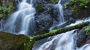 Hintergrundbilder USA Park Wasserfall Kalifornien Felsen Laubmoose Holzstamm Sequoia National Park Natur