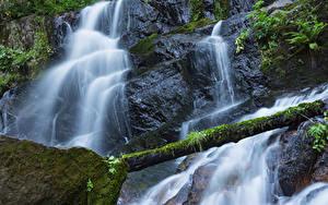 Hintergrundbilder Vereinigte Staaten Park Wasserfall Kalifornien Felsen Laubmoose Holzstamm Sequoia National Park Natur