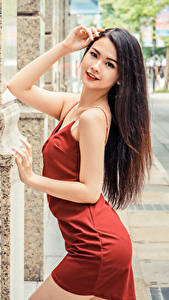 Pictures Asiatic Posing Frock Hands Hair Brown haired Staring young woman