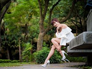Fotos Asiatische Parks Bank (Möbel) Lächeln Blick Bein Schöner Sitzend Braune Haare Mädchens