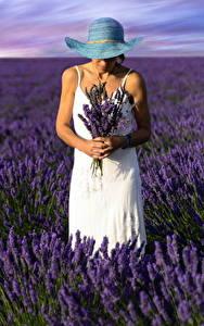 Bilder Felder Lavendel Der Hut Natur Mädchens