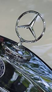 Photo Logo Emblem Closeup Mercedes-Benz hood auto