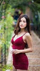 Bilder Asiatische Kleid Unscharfer Hintergrund Starren Braune Haare Model