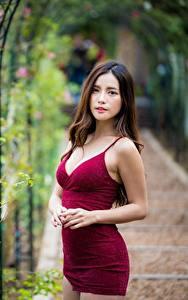 Bilder Asiatische Kleid Unscharfer Hintergrund Starren Braune Haare Model junge frau