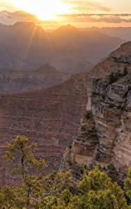 Fotos Grand Canyon Park USA Park Sonnenaufgänge und Sonnenuntergänge Felsen Canyon Natur
