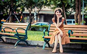 Bilder Asiaten Bank (Möbel) Sitzend Rock Barett Braunhaarige Starren