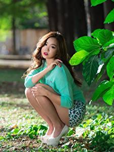Bilder Asiatisches Braune Haare Sitzt Bokeh Hand Sweatshirt Bein
