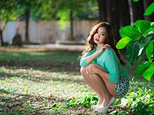 Bilder Asiatisches Braune Haare Sitzt Bokeh Hand Sweatshirt Bein Mädchens
