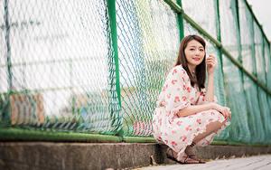 Fotos Asiatische Zaun Sitzen Kleid Blick Mädchens