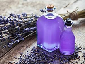 Bilder Lavendel Öle Flasche Blüte