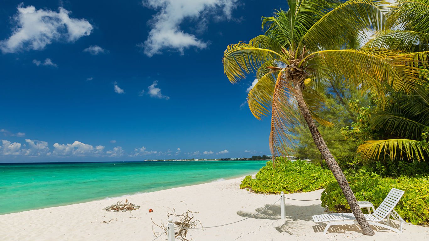 Wallpaper Grand Cayman Nature Sky Palms Tropics Coast Sunlounger Clouds 1366x768 palm trees