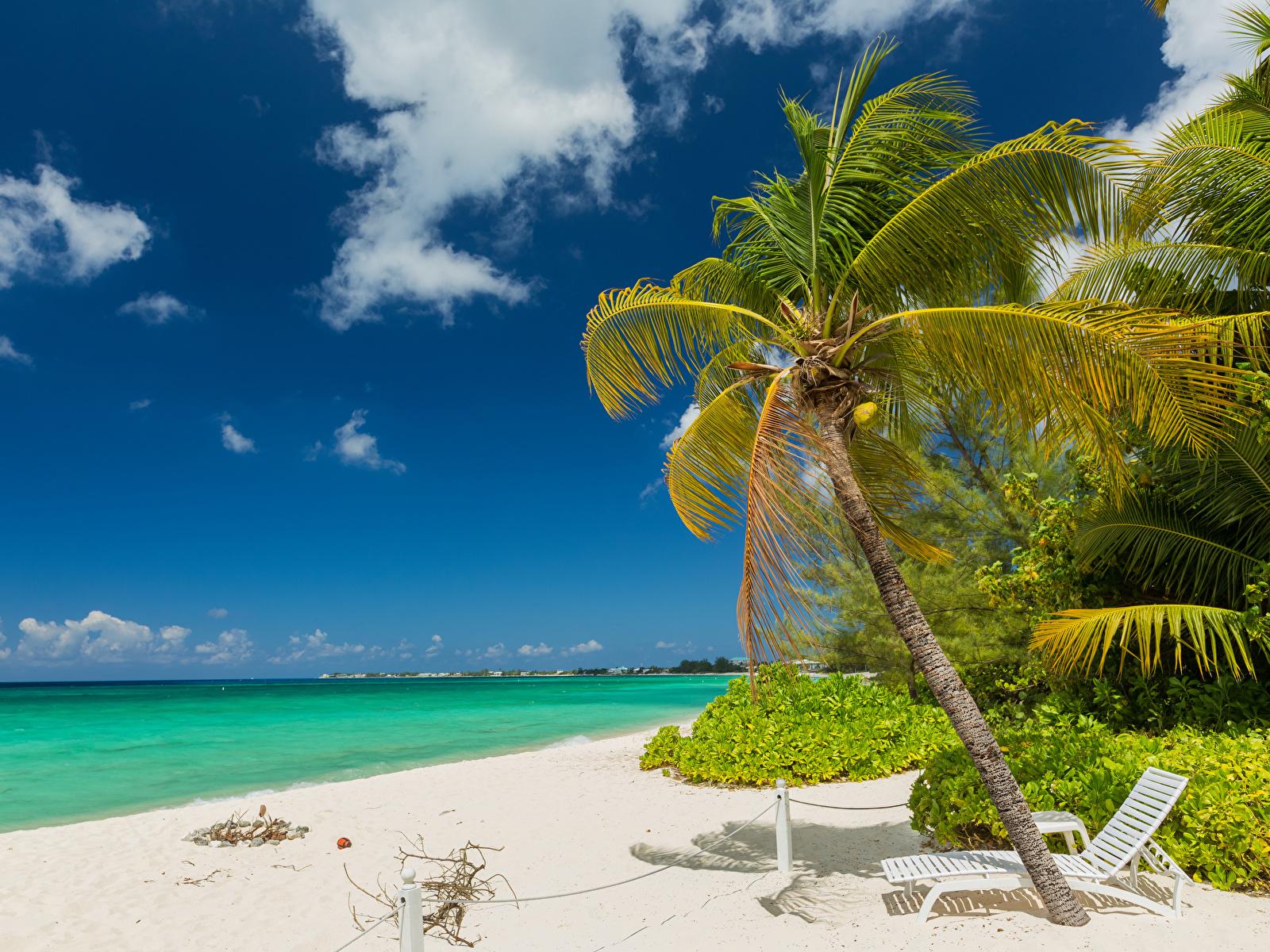 Wallpaper Grand Cayman Nature Sky Palms Tropics Coast Sunlounger Clouds 1600x1200 palm trees