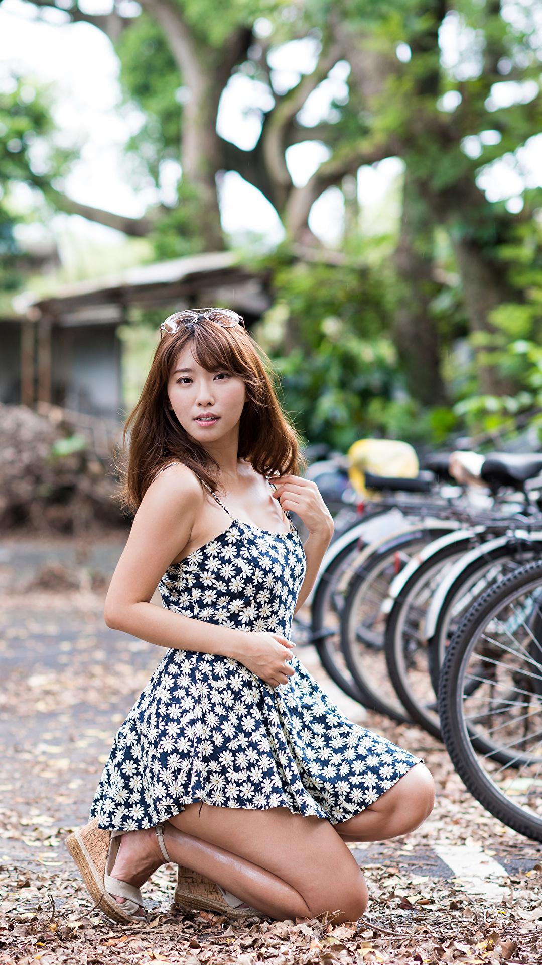 Foto Braune Haare Bokeh Fahrrad junge frau asiatisches Kleid 1080x1920 für Handy Braunhaarige unscharfer Hintergrund fahrräder Mädchens junge Frauen Asiaten Asiatische