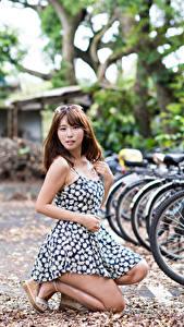 Fotos Asiatisches Braune Haare Bokeh Kleid Fahrräder junge Frauen