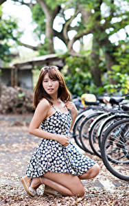 Fotos Asiatisches Braune Haare Bokeh Kleid Fahrräder