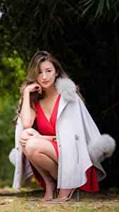 Bilder Asiaten Sitzt Kleid Braune Haare junge frau