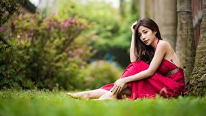 Hintergrundbilder Asiatische Kleid Pose Bokeh Braunhaarige Sitzend Mädchens