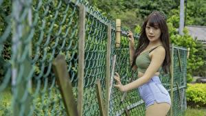 Hintergrundbilder Asiaten Zaun Braunhaarige Starren Shorts Hand junge frau