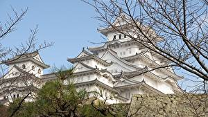 Pictures Japan Castles Branches Himeji Castle, Hyogo prefecture Cities