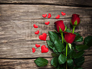 Papéis de parede Dia dos Namorados Rosas Tábuas de madeira Coração Vermelho Flores