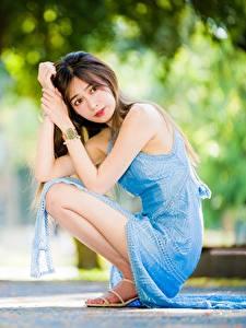 Bilder Asiaten Unscharfer Hintergrund Posiert Sitzt Kleid Starren junge frau