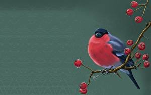 Picture Birds Bullfinch Sorbus Painting Art Branches Svetlana Antonova Animals