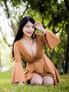 Desktop hintergrundbilder Asiatisches Brünette Gras Sitzen Kleid Dekolletee Lächeln Starren Unscharfer Hintergrund Mädchens