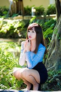 Bilder Asiatische Braunhaarige Unscharfer Hintergrund Sitzend Hand Bein Strauch junge Frauen