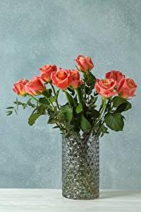 Fotos Rose Sträuße Vase Vorlage Grußkarte Blumen