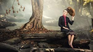 Bilder Steine Herbst Asiatische Baumstamm Sitzt Brünette Der Hut Nebel Mädchens