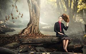 Wallpaper Stones Autumn Asian Trunk tree Sit Brunette girl Hat Fog Girls
